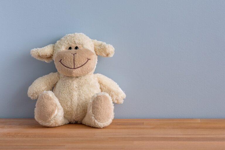 Przytulanka – prezent uniwersalny dla dzieci i nastolatków